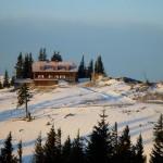 Tirolerkogel-Schitour