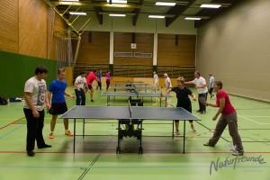 Tischtennis-Wilhelmsburg