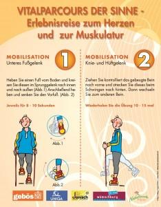 Mobilisationstafel Muster