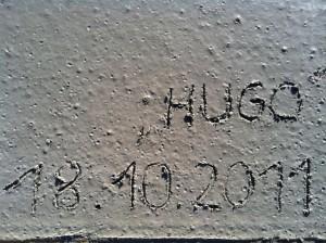 IMG_1806